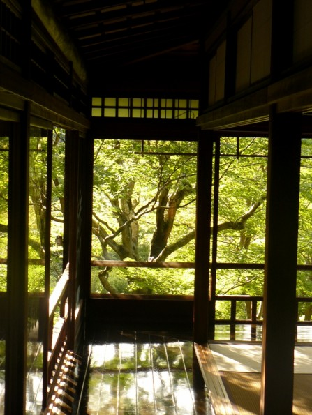 京都 瑠璃光院の光